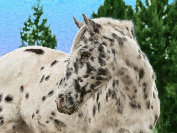 Painting - Appaloosa Equ423010 by Dean Wittle