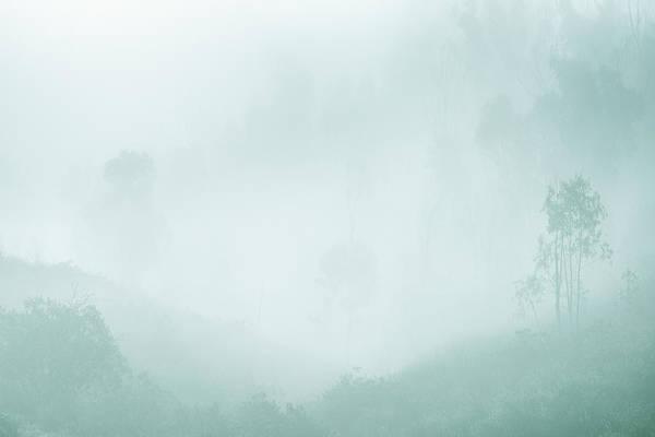 Photograph - Apparition by Alexander Kunz