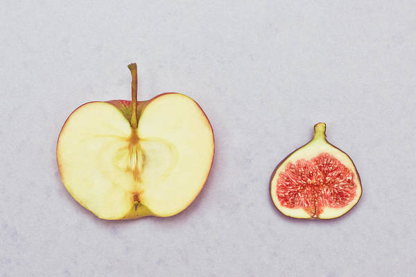 Fruit Photograph - Apple And Fig by Tom Gowanlock