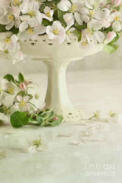 New Beginnings Photograph - Apple Blossom Flowers In Vase On Table/digital Painting  by Sandra Cunningham