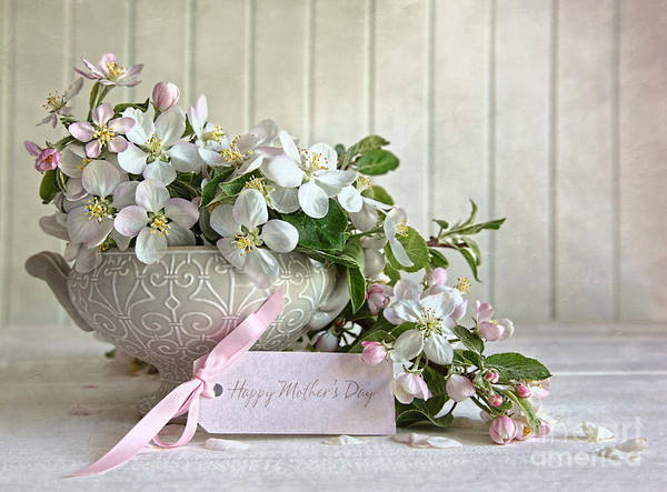 Photograph - Apple Blossom Flowers In Vase With Gift Card by Sandra Cunningham