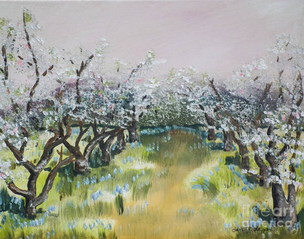 Painting - Apple Blossoms In Ellijay -apple Trees - Blooming by Jan Dappen