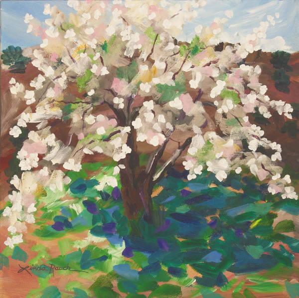 Painting - Apple Blossoms by Linda Rauch