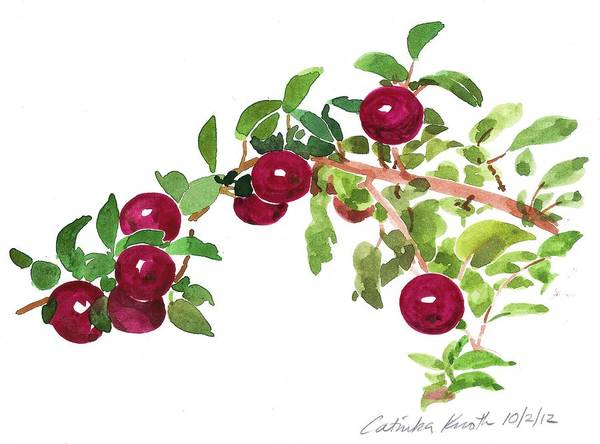 Painting - Apple Bough Watercolor by Catinka Knoth