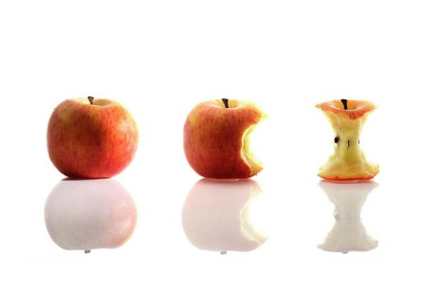 Red Delicious Apple Photograph - Apple Eating Sequence by Cordelia Molloy/science Photo Library