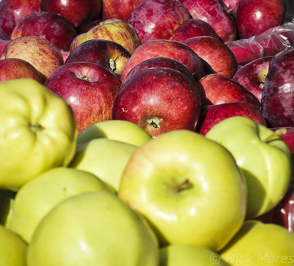 Photograph - Apple From The Market by Nick Mares
