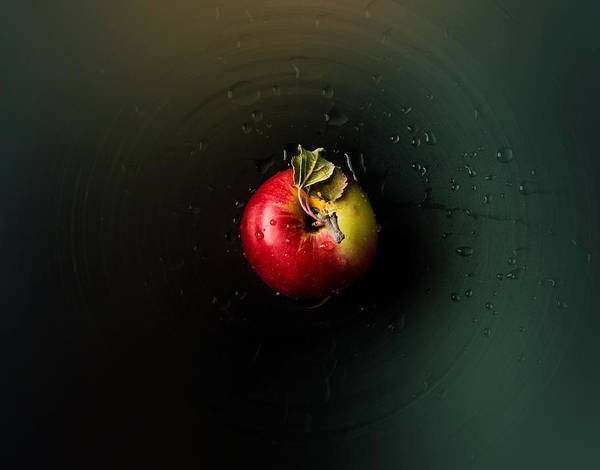 Red Delicious Apple Photograph - Apple by Ivan Vukelic