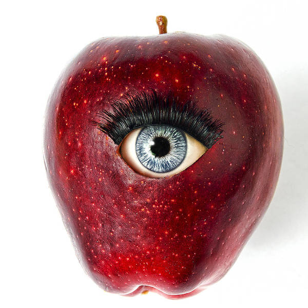 Photograph - Apple Of My Eye by Rick Mosher