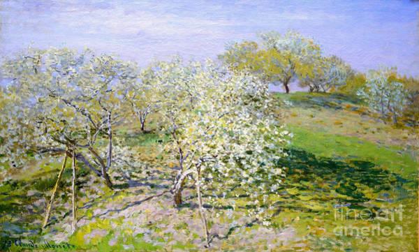 Apple Trees In Bloom 1873 Art Print