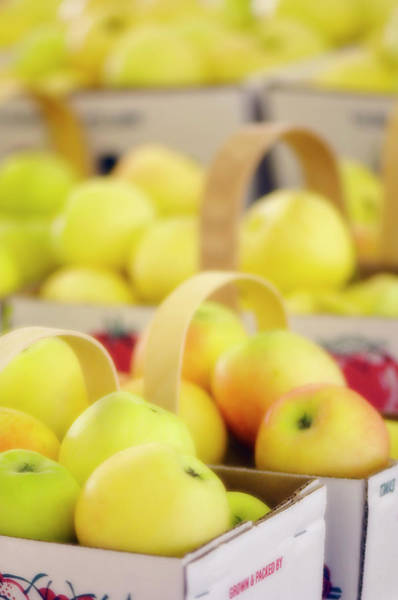 Wall Art - Photograph - Apples by Maria Mosolova/science Photo Library