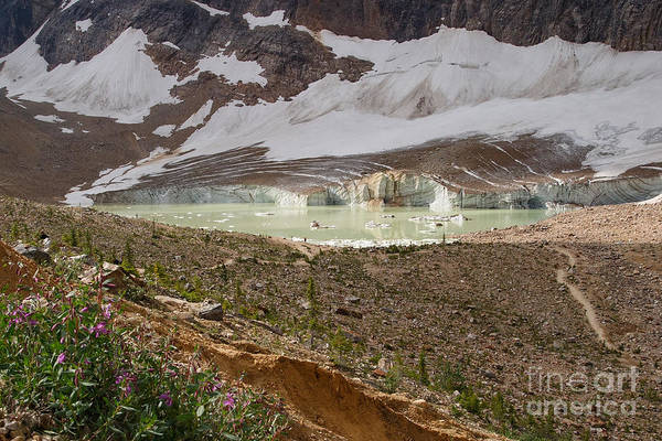 Photograph - Approaching Cavell Glacier by Charles Kozierok