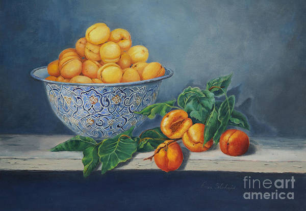 Wall Art - Painting - Apricots And Peaches by Portraits By NC