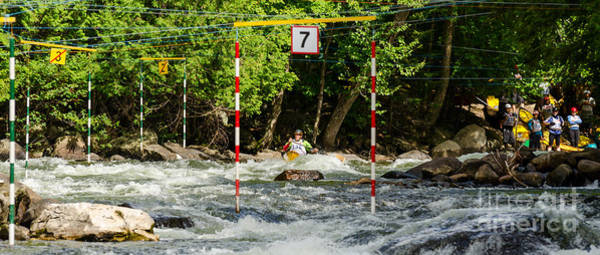 Photograph - Aproaching The Slalom Gate by Les Palenik