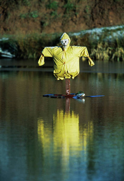 Biological Pest Control Photograph - Aquatic Scarecrow by Andy Harmer/science Photo Library