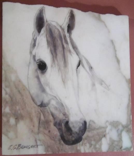 Elwood Blues Painting - Arabian Horse by Elwood  George Bengert