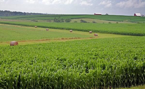 Hay Bale Wall Art - Photograph - Arable Farm by Jim West
