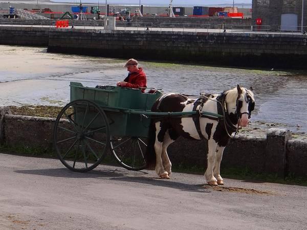 Photograph - Aran Pony Cart by Keith Stokes