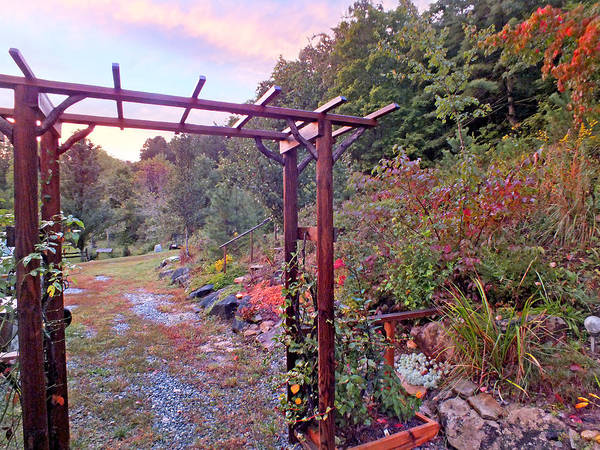 Photograph - Arbor And Fall Colors 2 by Duane McCullough
