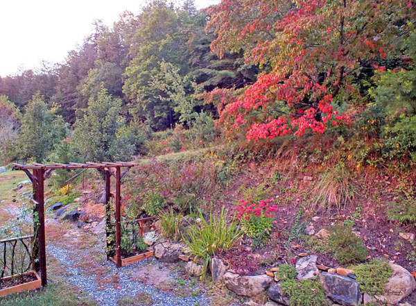 Photograph - Arbor And Fall Colors by Duane McCullough