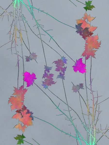 Manipulated Digital Art - Arbor Autumn Harmony 1 by Tim Allen