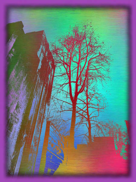 Arbor Digital Art - Arbor In The City 2 by Tim Allen