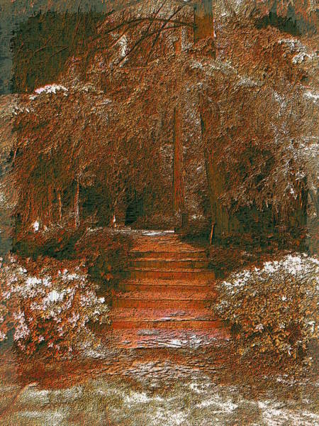 Arbor Digital Art - Arbor Steps by Tim Allen