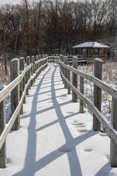 Photograph - Arboretum Boardwalk - Madison - Wisconsin by Steven Ralser