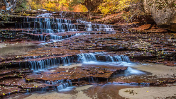 Photograph - Arch Angel Falls Zion by Pierre Leclerc Photography