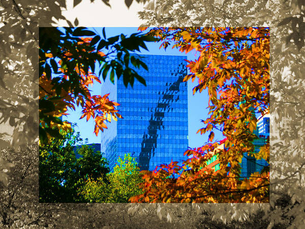 Photograph - Arch Reflected Glass Building Fall Trees by Patrick Malon