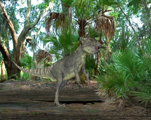 Paleozoology Wall Art - Photograph - Archaeoceratops Dinosaur by Friedrich Saurer