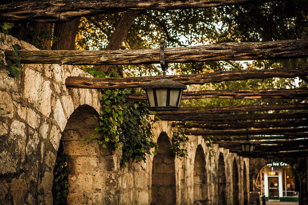 Arches At The Alamo Art Print