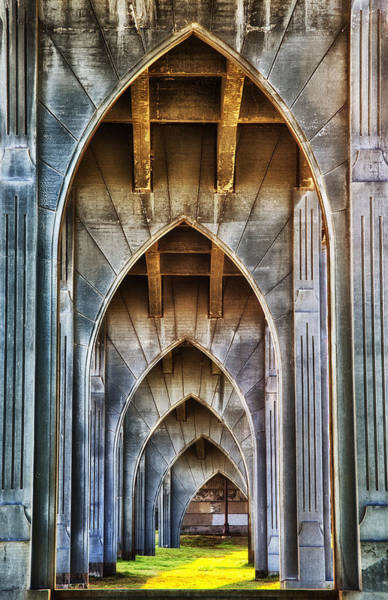 Photograph - Arches For Days by Darren  White