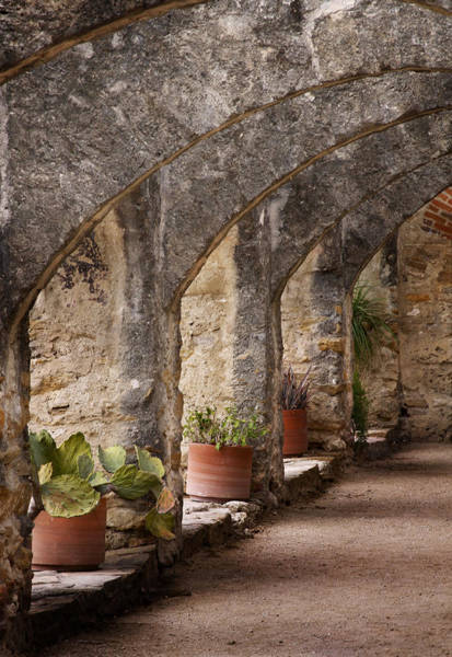Spanish Missions Wall Art - Photograph - Arches Of San Jose by David and Carol Kelly