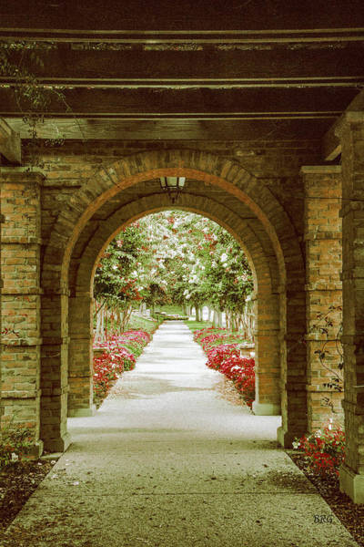 Photograph - Archway And Blooming Trees by Ben and Raisa Gertsberg