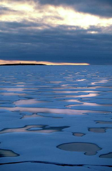 Ice Floe Photograph - Arctic Seascape At Sunset by Patrick Landmann/science Photo Library