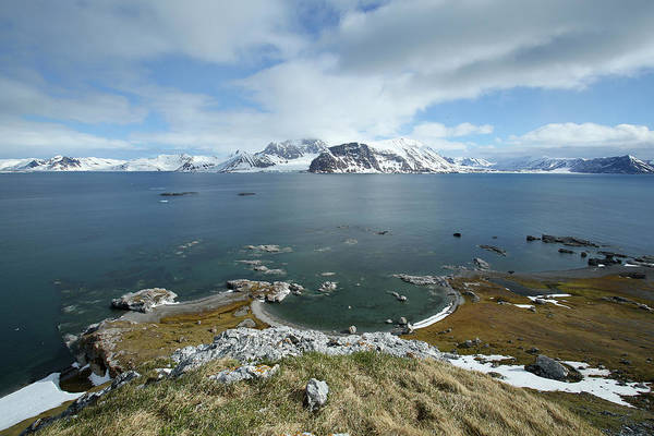 Anchorage Photograph - Arctic, Svalbard, Sor-spitsbergen by Aliscia Young