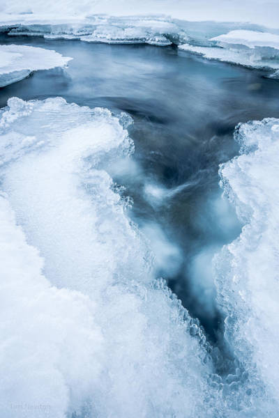 Photograph - Arctic Vortex by Tim Newton