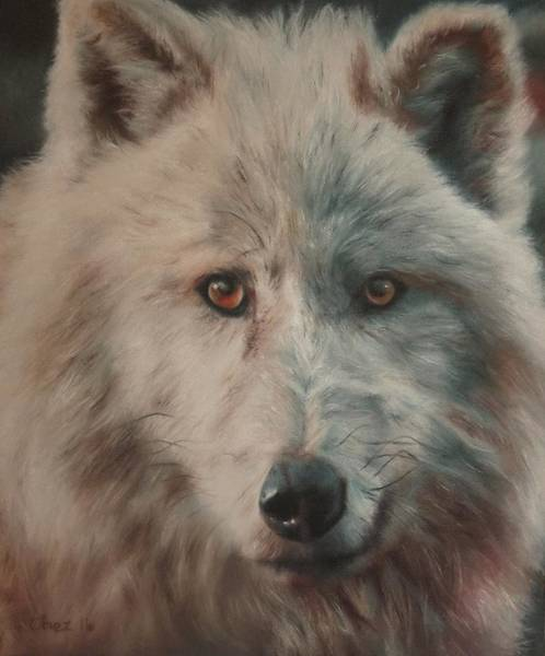 Arctic Wolf Painting - Arctic Wolf by Cherise Foster