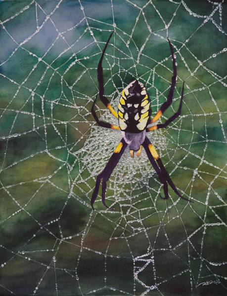 Painting - Argiope Web by Christopher Reid