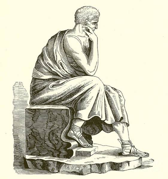 Philosopher Wall Art - Drawing - Aristotle by English School