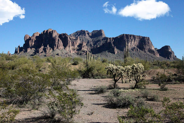 Photograph - Arizona Desert by Gary Gunderson