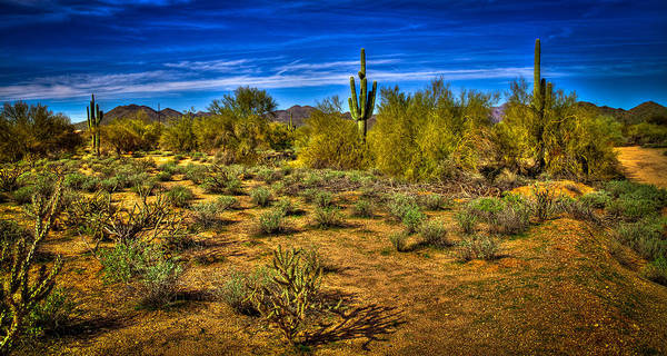 Photograph - Arizona Landscape Iv by David Patterson