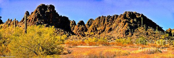 Photograph - Arizona Panorama Organ Pipe by Bob and Nadine Johnston