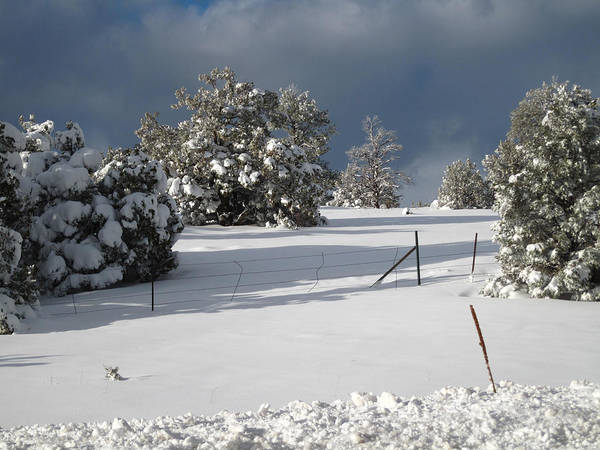 Arizona Snow 3 Art Print