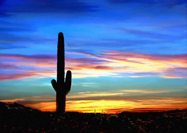 Arizona Sunset Saguaro National Park Art Print