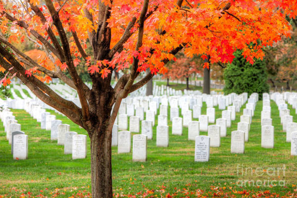 Photograph - Arlington National Cemetery In Autumn IIi by Clarence Holmes