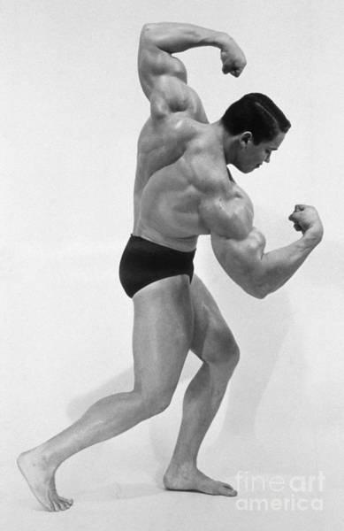 Photograph - Arnold Schwarzenegger by Explorer
