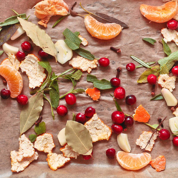 Wall Art - Photograph - Aromatic Ingredients by Tom Gowanlock