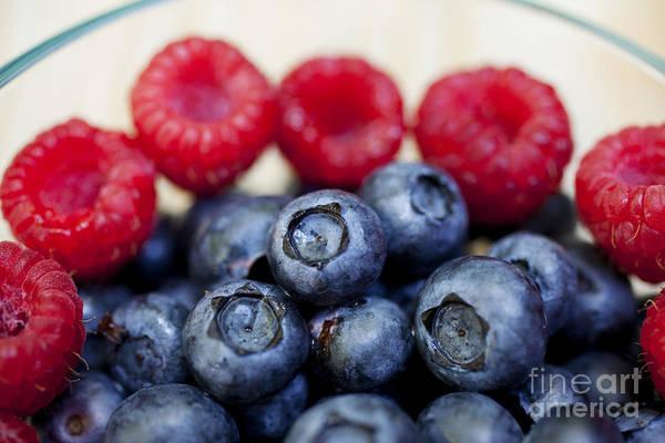 Photograph - Arrangement Of Raspberries And Blueberries by Charmian Vistaunet
