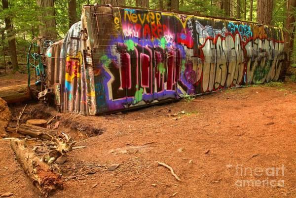 Photograph - Art Along The Cheakamus River by Adam Jewell